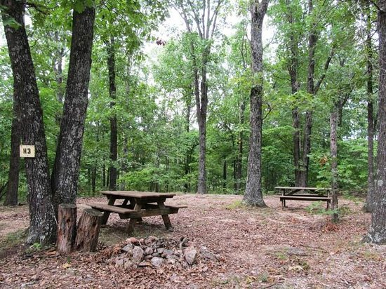 Show Me Acres - Specialty Resort Reviews (Stover, MO