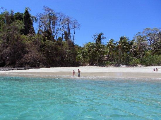 Hotel Bocas del Mar: Beach visited on snorkelling trip