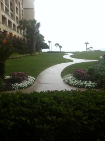 The Ritz-Carlton, Amelia Island: Photo of the property outdoors towards the beach