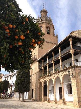 La Colegiata: the Square outside the Apartments