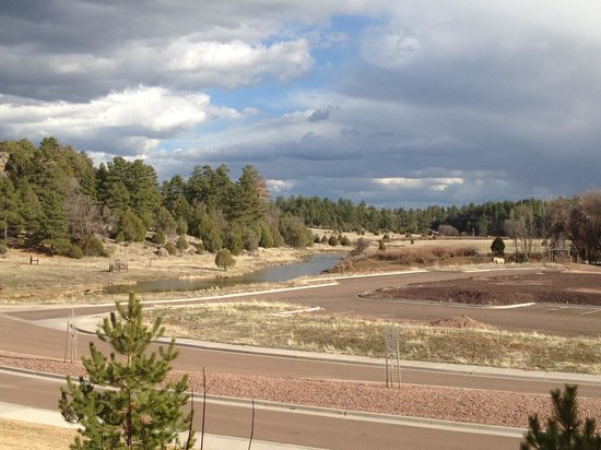 Hampton Inn & Suites Show Low-Pinetop : The view of the creek behind the hotel