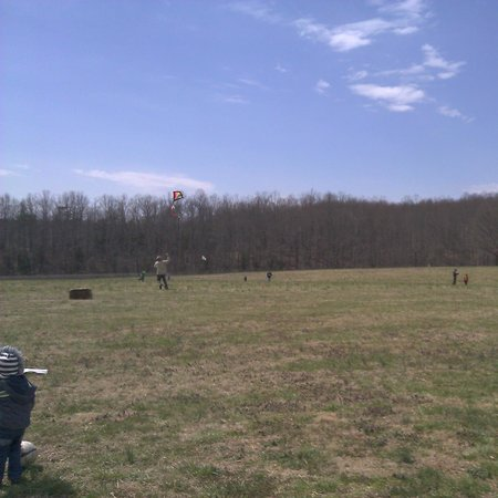 Kite flying at First Colony Winery