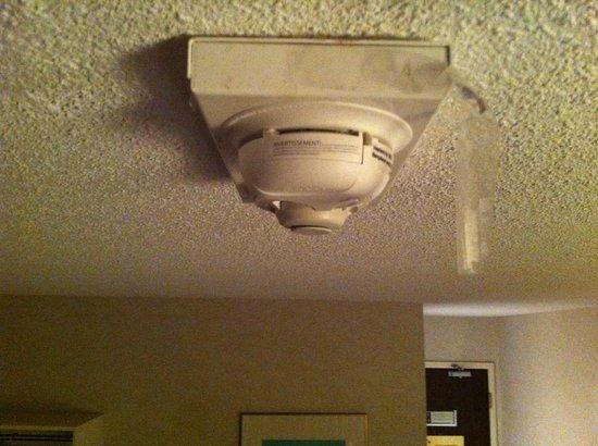 Comfort Inn Montreal Aeroport : papier collant qui pend du plafond