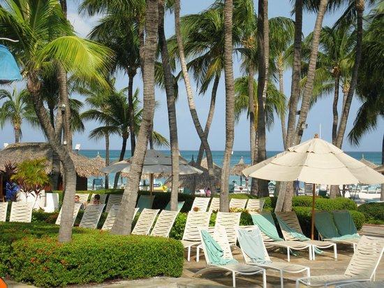 Hyatt Regency Aruba Resort and Casino: Pool