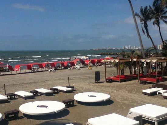 Hotel Dann Cartagena Colombia
