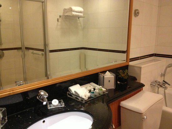 Metropark Hotel Causeway Bay Hong Kong: Big bathroom