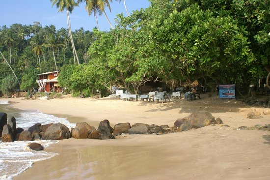 Surf Sea Breeze: la plage