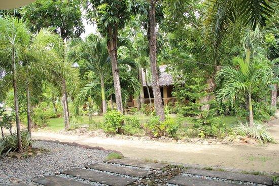 Casa Pilar Beach Resort: Grounds!