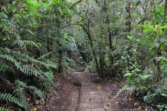 Peace Lodge: Hiking trail