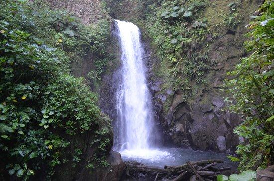 Peace Lodge: Falls