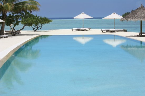 Cocoa Island by COMO : the infinity pool
