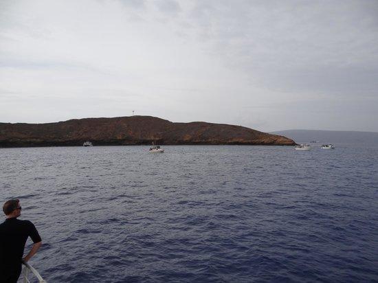 Aqua Adventures: Molokina Crater - Beautiful
