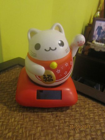 Focal Local Bed and Breakfast: Fortune cat!