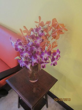 Focal Local Bed and Breakfast: Orchids