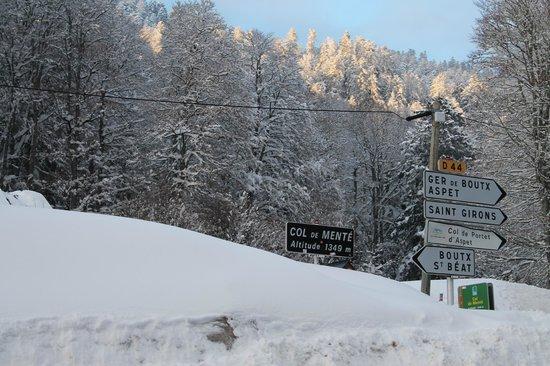 Murmures d'Arbres: Route des pistes