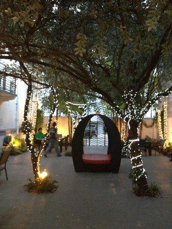 Harrison Hotel: garden