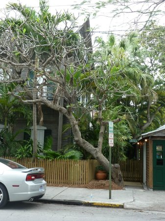 Cypress House Hotel : Key West: Frint of house and office