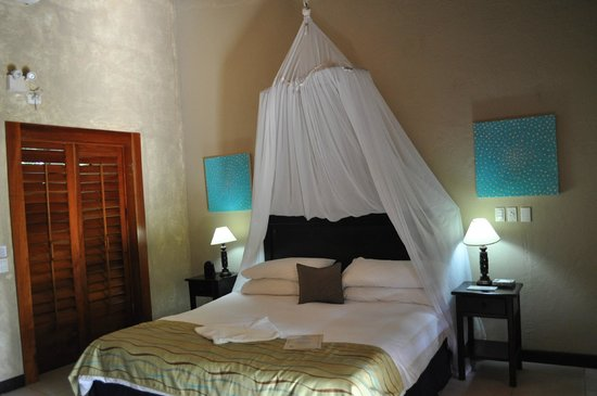 Falls Resort at Manuel Antonio: chambre