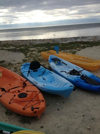 White Sands Inn: Kayaks