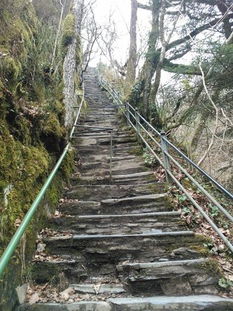 Devil's Bridge Falls: Jacobs Ladder 100 steps to decend