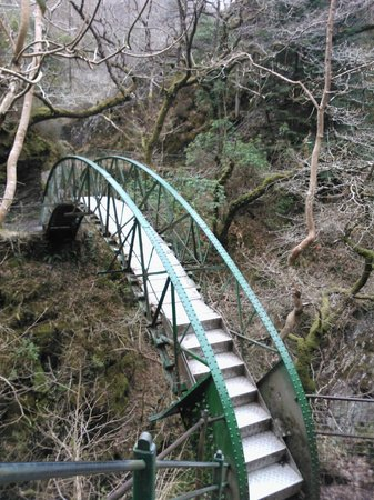 Devil's Bridge Falls: Footbridge at the bottom of the falls before the climb back up