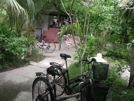 Secret Garden: Giardino fronte camera