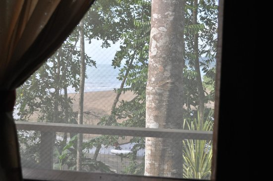 Pirate Cove: Vue de la fenêtre à travers la moustiquaire