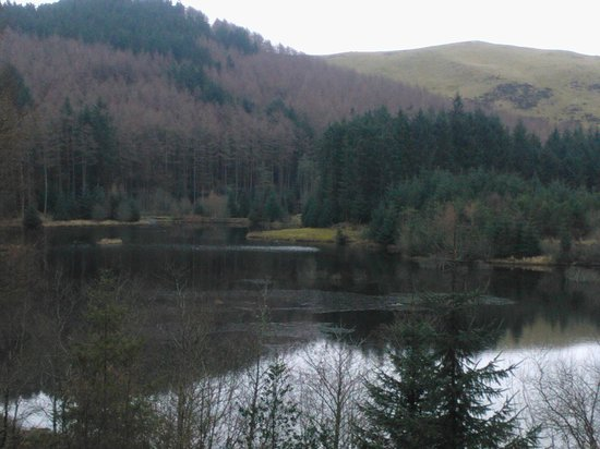 Bwlch Nant yr Arian Forest Visitor Centre: View of lake from Visitors Centre