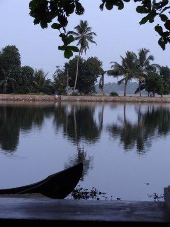 Our Land Island Backwater Resort: Ausblick