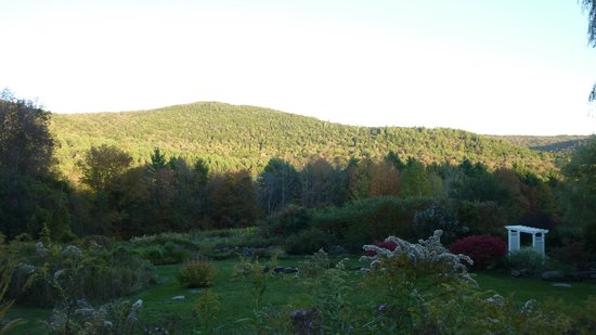 Windham Hill Inn: view