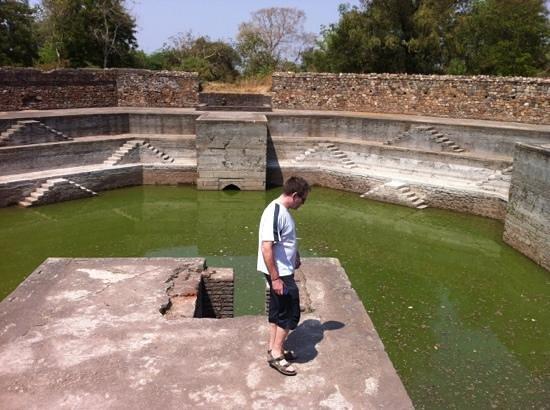 Champaner-Pavagadh Archaeological Park: gammel badeanstalt