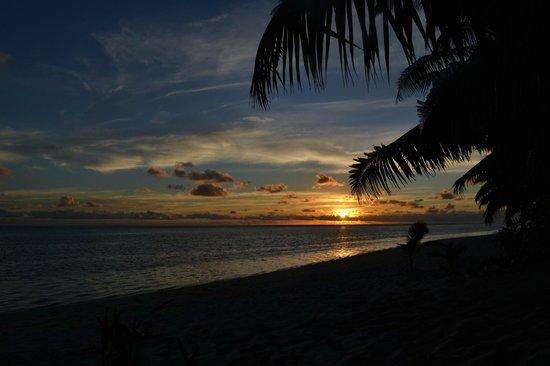 Makayla Palms照片