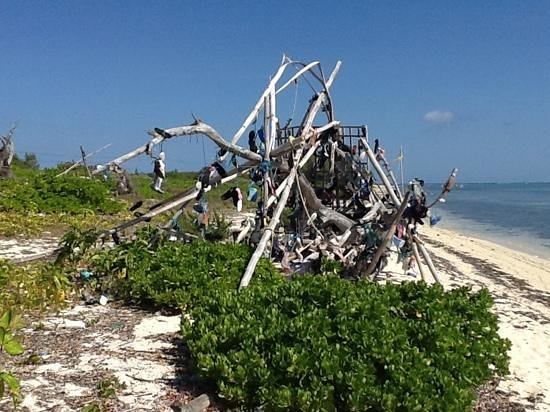 Wyndham Reef Resort: the shoe tree. they are everywhere