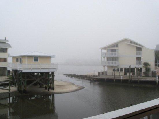 Cedar Cove Beach & Yacht Club: Foggy view