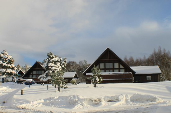 QLodges Slaley Hall: several lodges