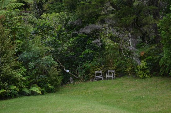 Wairua Lodge - Rainforest River Retreat: The grounds