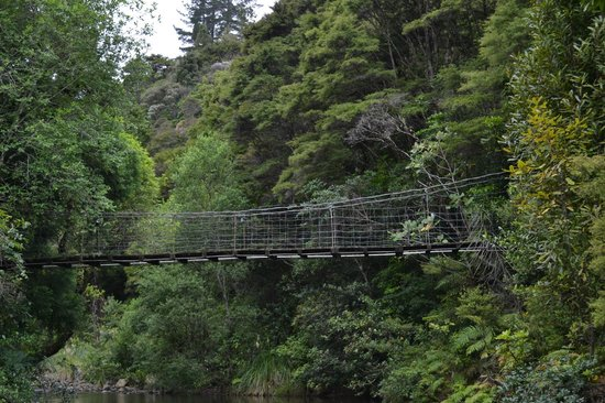 Wairua Lodge - Rainforest River Retreat: A suspension bridge connects the lodge grounds to nearby trails