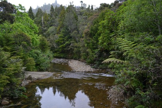 Wairua Lodge - Rainforest River Retreat: The road to the Lodge fords this stream