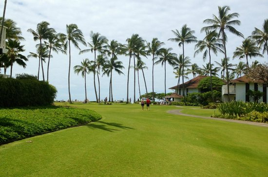 Kiahuna Plantation Resort: Family Play area/view of the beach at the palm trees
