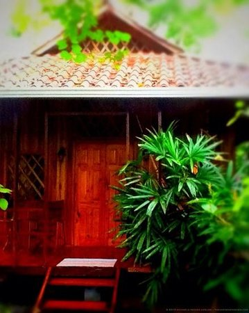 Coral Hill Bungalows: Our beautiful, tropical bungalow