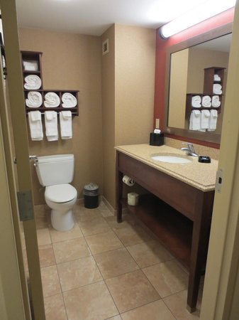 Hampton Inn & Suites St. Louis/South I-55: Spacious bathroom in 2 queen standard room
