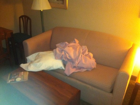 Red Roof Inn & Suites Battle Creek: Pull out couch unmade