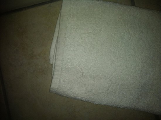 Red Roof Inn & Suites Battle Creek: Hair on towels which were on the floor