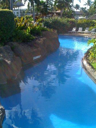 Sheraton Maui Resort & Spa : Poolen med havvand . fantastisk