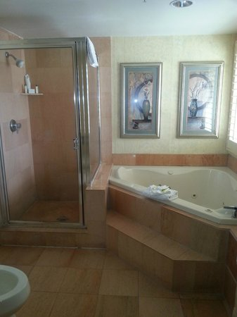 DoubleTree Suites by Hilton Doheny Beach - Dana Point: Shower and jacuzzi tub