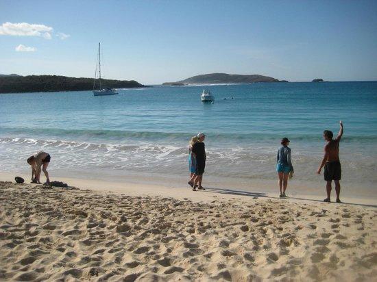 Capt Dan Classic Sails Day Tours: Culebrita