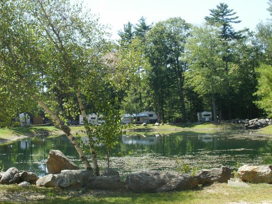 Saddleback Campground : Pond for swimming/frog catching/ no license fishing