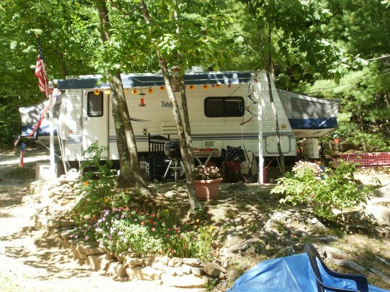 Saddleback Campground : shaded sites