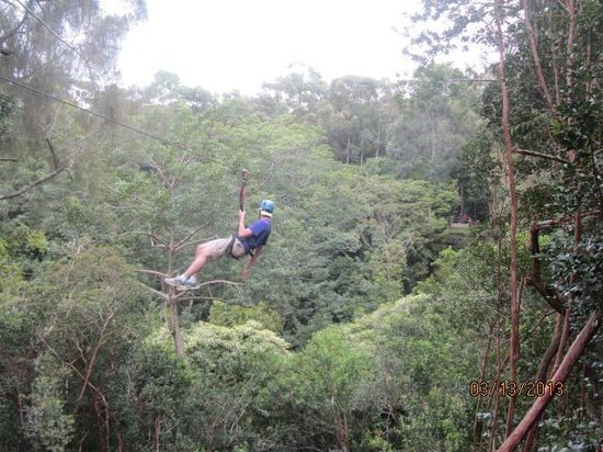 Big Island Eco Adventures II Zipline Canopy Tour: Phillip at Zipline !