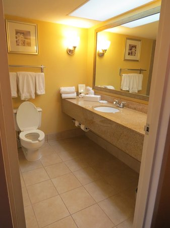 Holiday Inn Express Miami Airport Central-Miami Springs: A View of the Bathroom